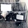 11.04.2018 / Markete Giren Kediyi Kafese Hapsettiler