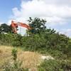 11.11.2018 / Ormanlar TOKİ'ye Devrediliyor